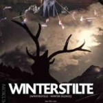 Winterstilte - DVD-Recensie
